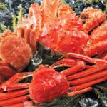 Hokkaido king crab gourmet tour